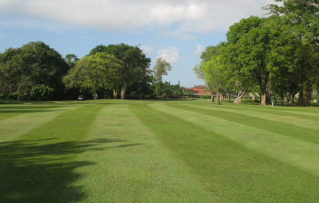 tree lined fairways bali beach golf club, bali