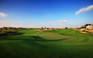 manicured green, the els club, dubai, united arab emirates