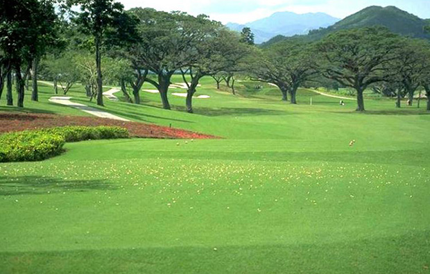 Tree-lined fairways Mimosa Golf Country Club, Clark, Philippines