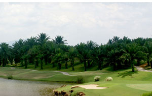 IOI Palm Villa Golf Country Resort