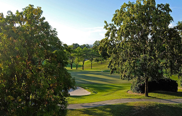 trees, phoenix gold golf country club, pattaya, thailand