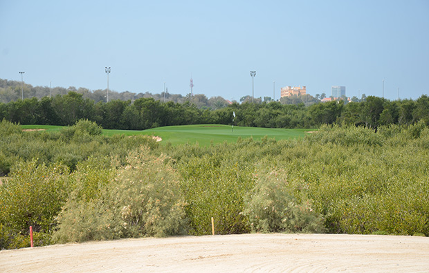 the thick rough at tower links golf club, dubai, united arab emirates