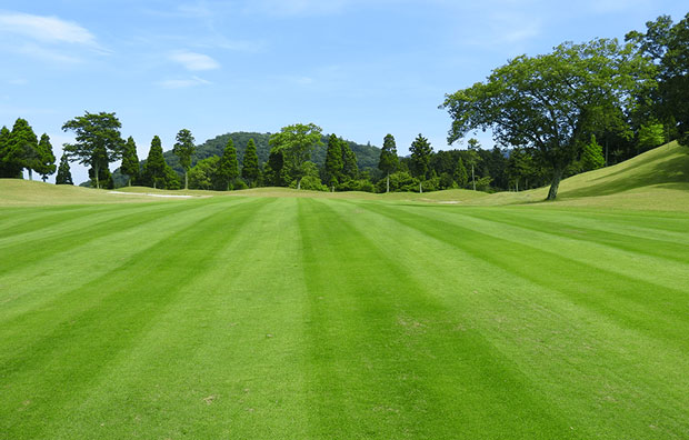 Naka-Izu Green Club Fairway