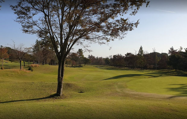 Three Lakes Country Club Fairway